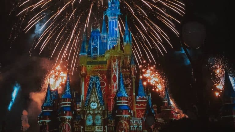 15 Things You Need in Your Disney Park Bag