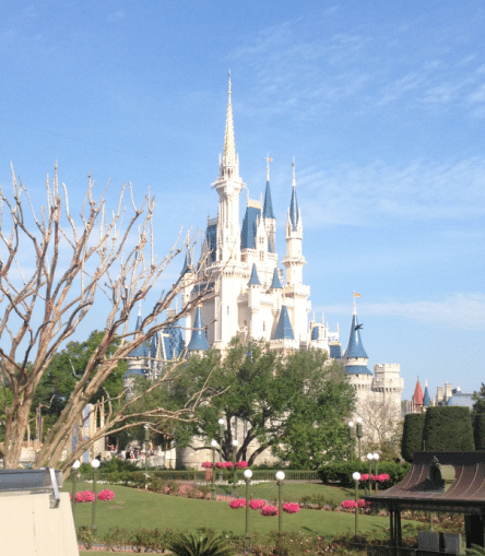 Castle - first Disney World vacation