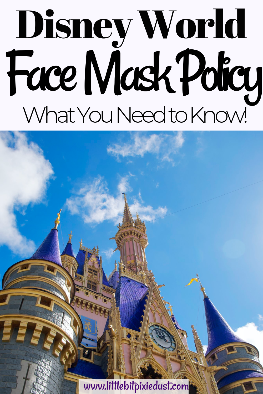 disney face mask policy