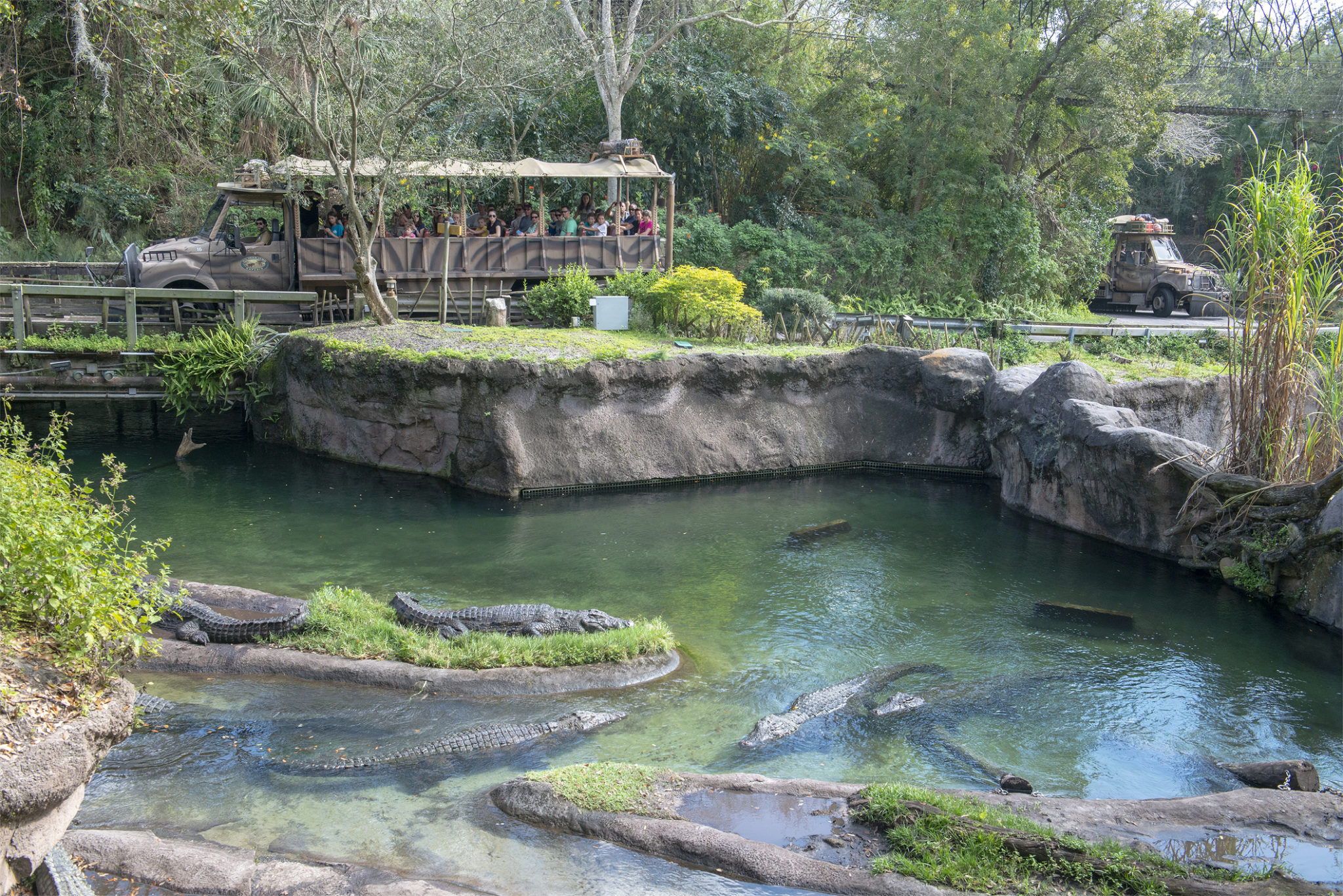 kilimanjaro safari ride at animal kingdom