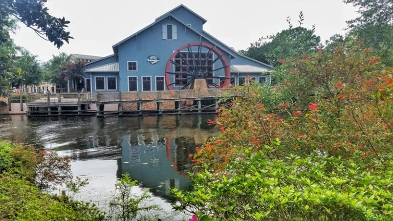 Disney World Moderate Resorts – What You Need to Know